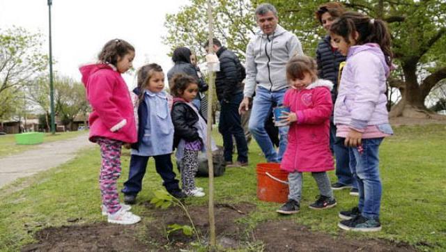 Programa de forestación del Centro de Educación Complementario